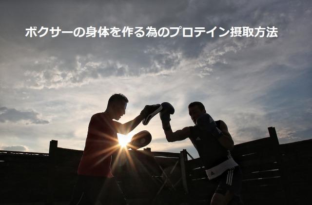 ボクサーの身体を作る為のプロテイン摂取方法
